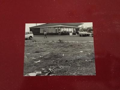 Adams book cover IMG_2459