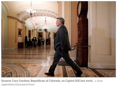 Gardner in NYT Screen Shot 2020-01-28 at 10.58.27 AM
